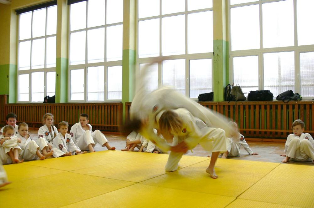 Zdjęcia z: 07.02.2015r. Egzamin Ju Jitsu