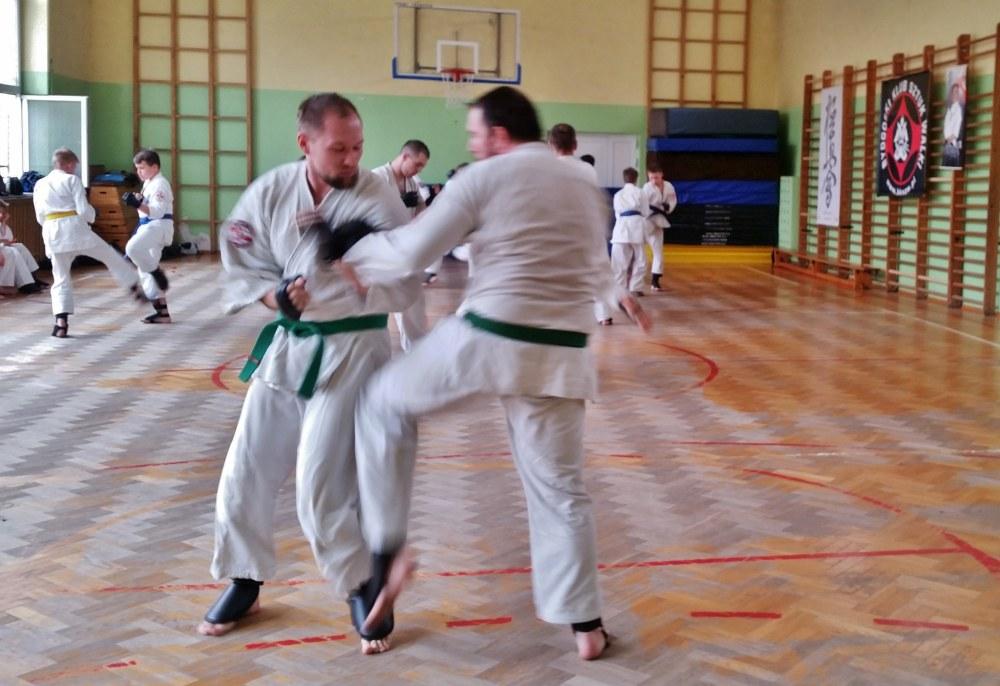 Zdjęcia z: 20.05.2017 Egzamin Kyokushin Karate