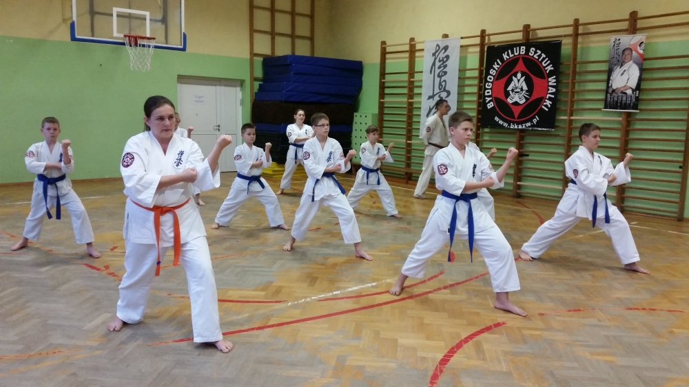 Zdjęcia z: Egzamin Karate Kyokushin 10.12.2016