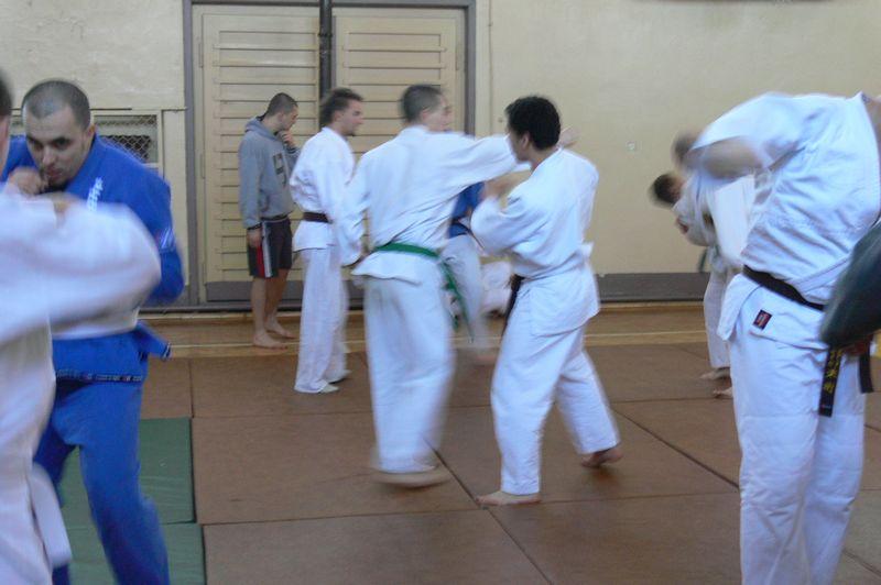 Zdjęcia z: Konsultacje Ju Jitsu - luty 2008
