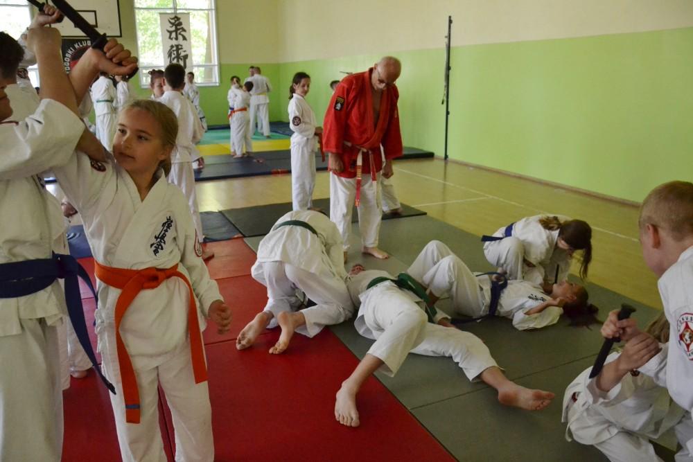 Zdjęcia z: Konsultacje Ju Jitsu BKSzW Przyjezierze 2019