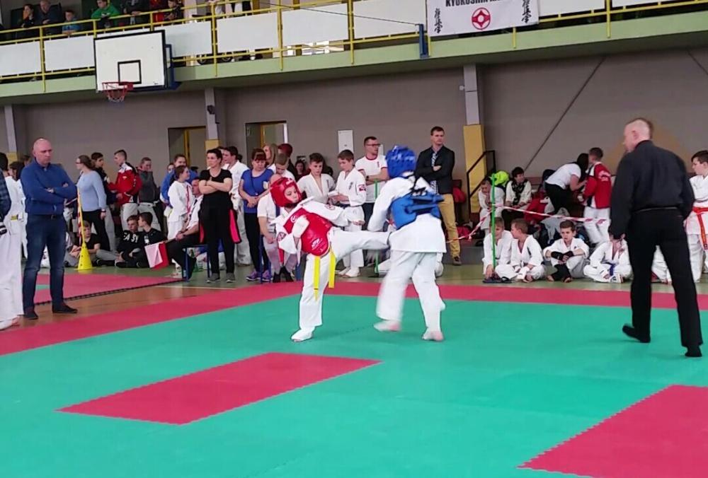Zdjęcia z: Ogólnopolski Turniej Karate Kyokushin w Lipnie 24.04.2017