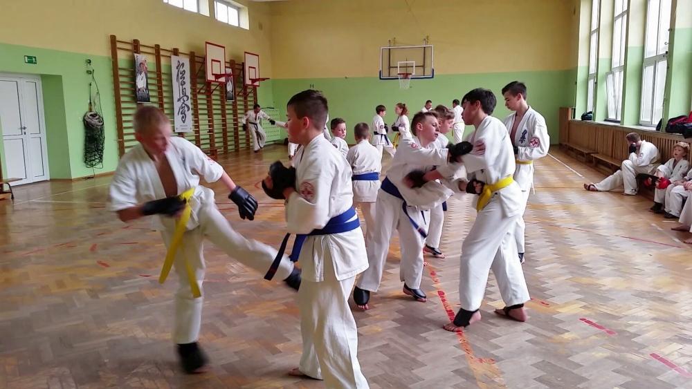 Zdjęcia z: Egzamin Kyokushin 21.05'16