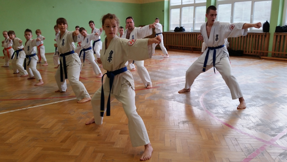 Zdjęcia z: Egzamin Karate Kyokushin 19.12.2015r.