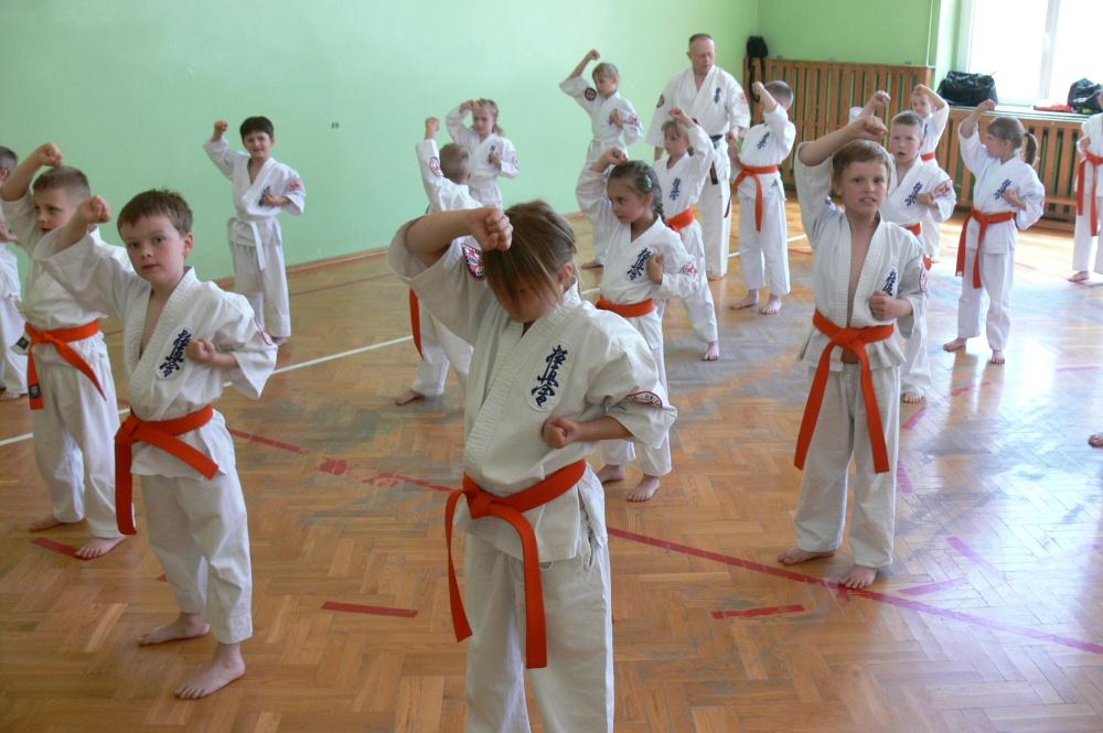 Zdjęcia z: 06.06.2015 Egzamin Kyokushin Karate