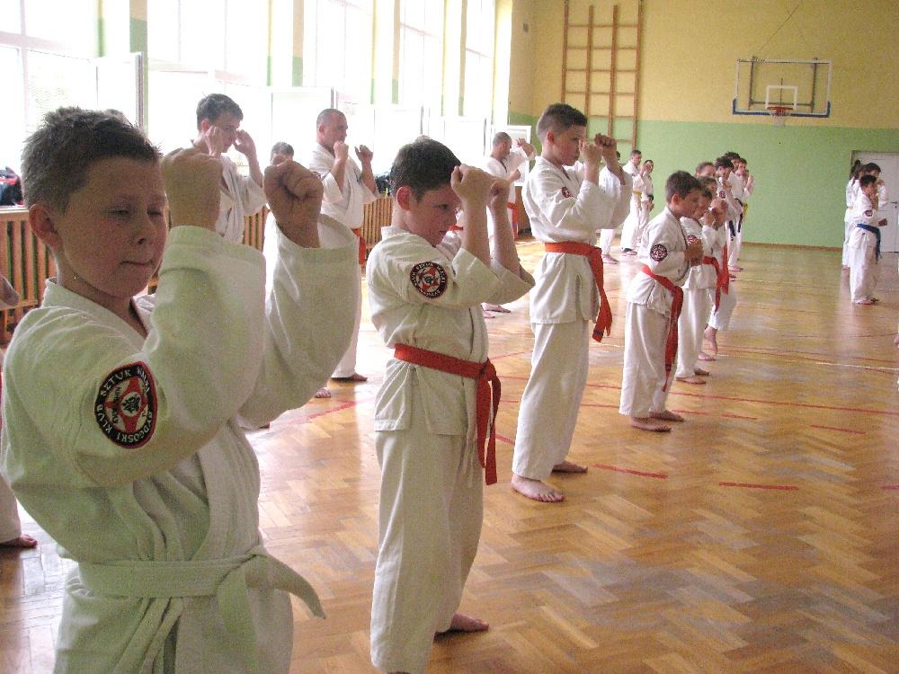 Zdjęcia z: 24.05.2014r.Egzamin Karate Kyokushin
