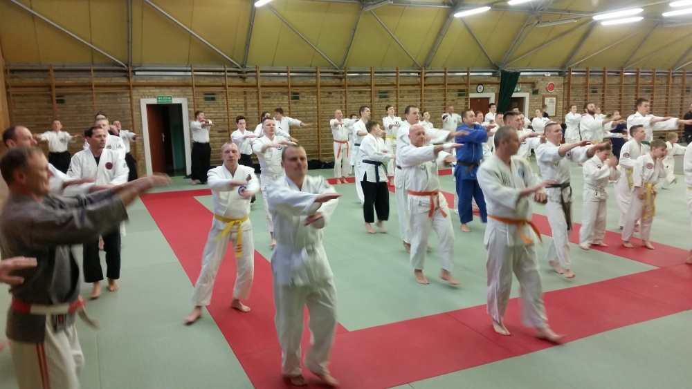 Zdjęcia z: Jubileuszowe Międzynarodowe Seminarium Jiu Jitsu w Szczecinie
