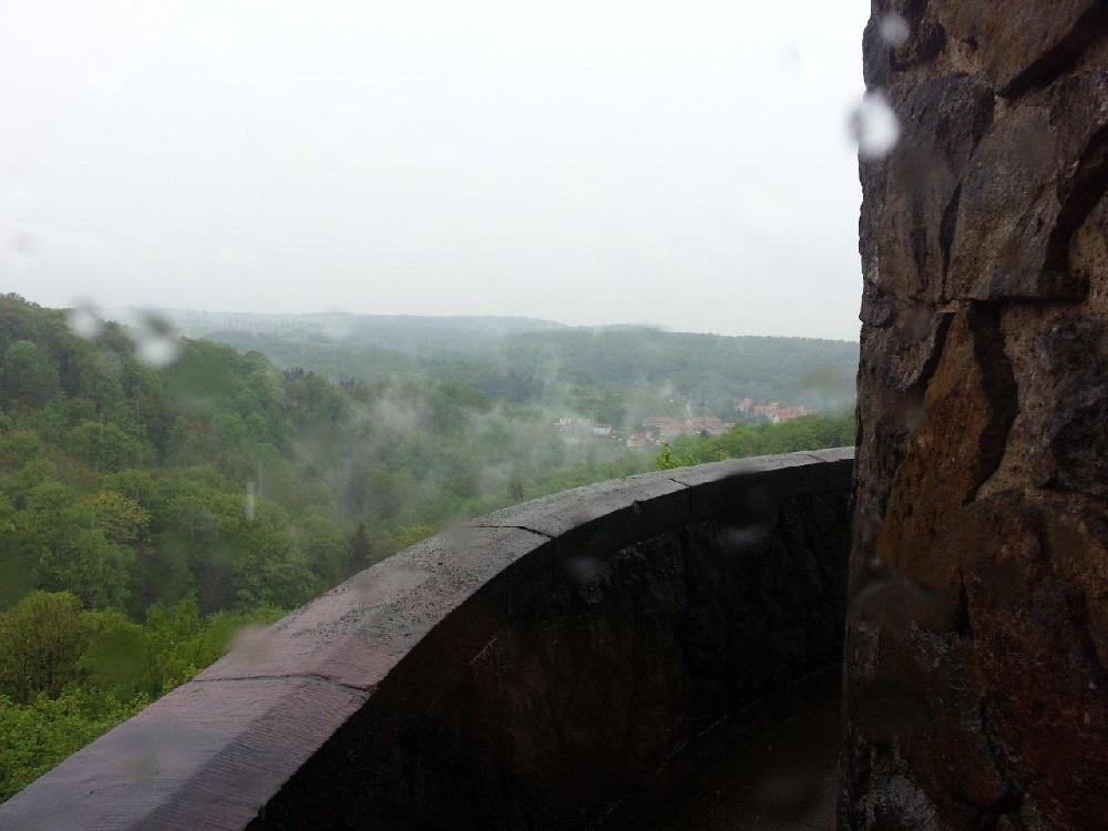 Zdjęcia z: Wycieczka - palmiarnia, zamek Książ 11-12 maja 2013r.