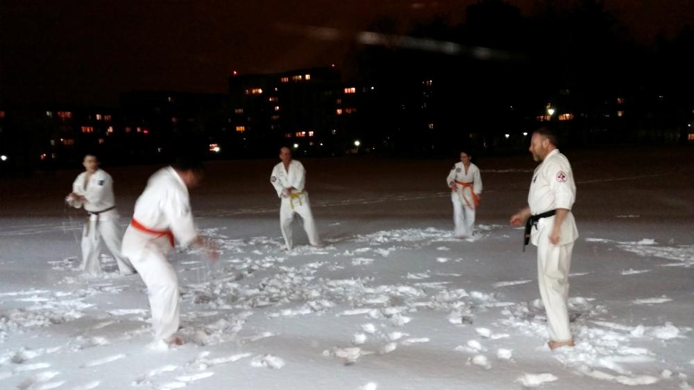 Zdjęcia z: Pierwszy śnieg w Nowym Roku 2016