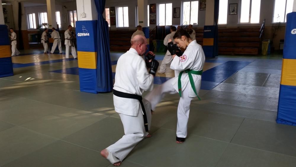 Zdjęcia z: Seminarium Kumite Kyokushin  w Gdyni