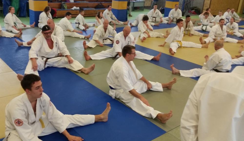 Zdjęcia z: Seminarium Karate Kyokushin w Gdyni - luty 2018