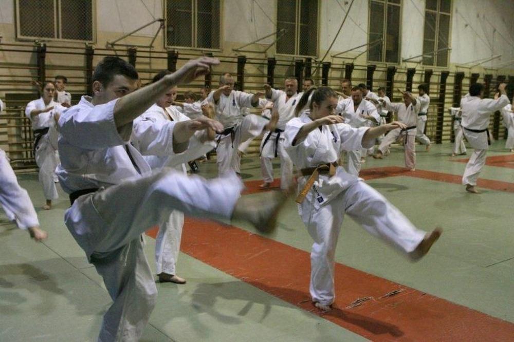 Zdjęcia z: 18.02.2015 Seminarium Kyokushin w Krakowie
