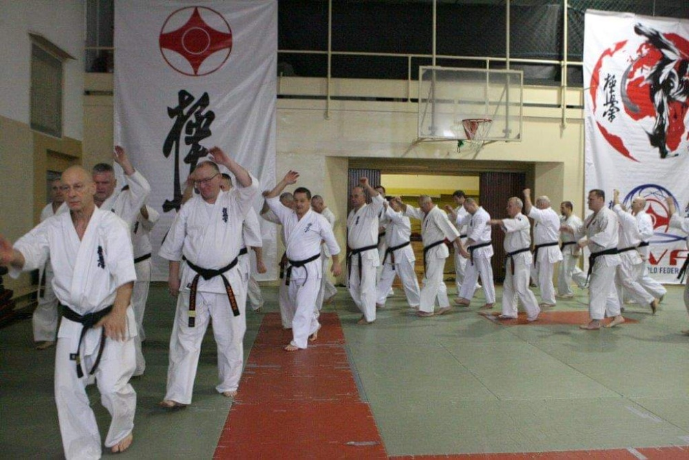 Zdjęcia z: Seminarium Kyokushin w Krakowie 25-26.01.2019
