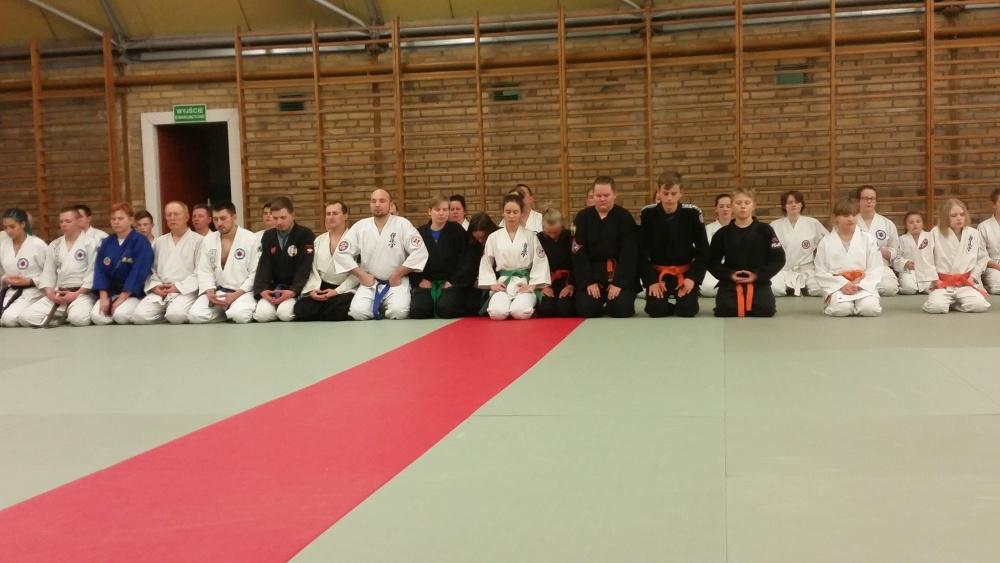 Zdjęcia z: Międzynarodowe Seminarium Ju Jitsu-Szczecin